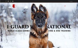 Website Design Company, orlando, spokane