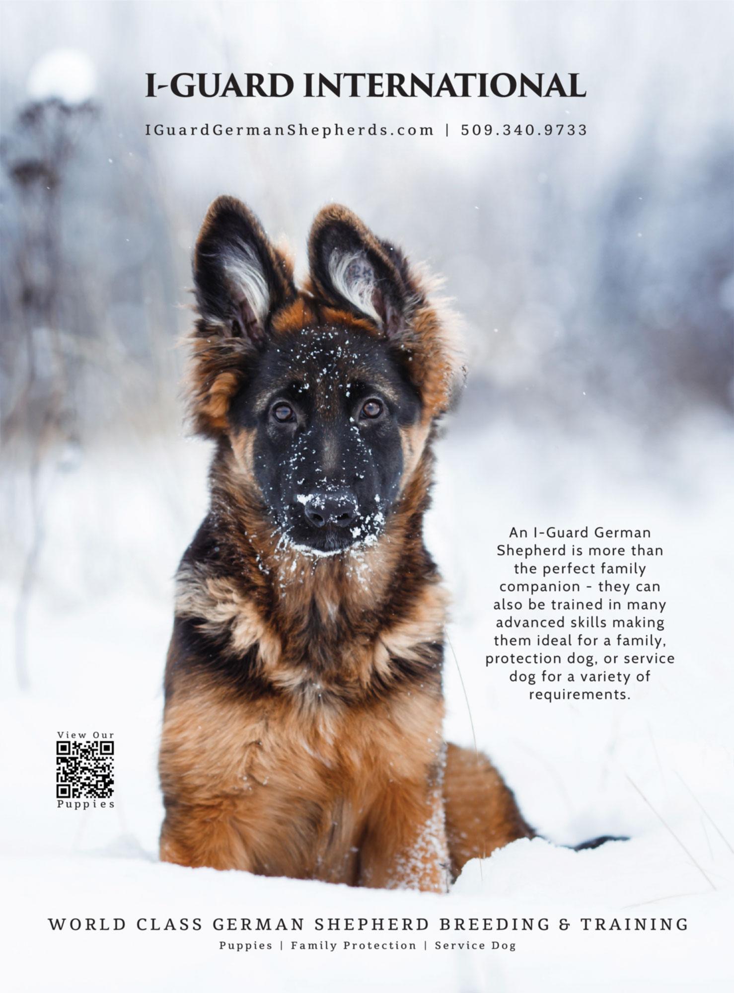 I-Guard International, marketing materials